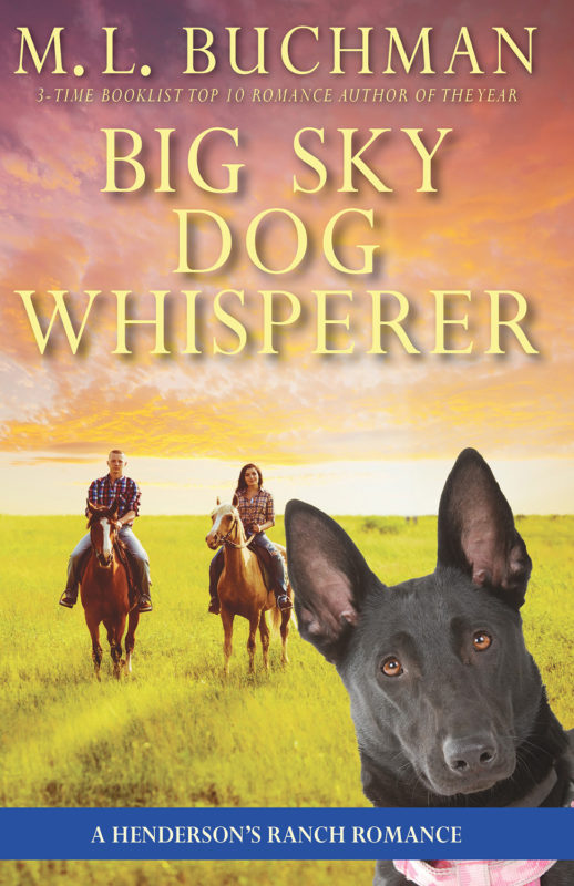 Big Sky Dog Whisperer