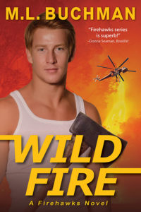 Wild Fire: a military romantic suspense novel